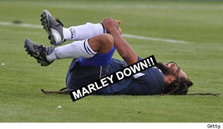 ziggy_marley